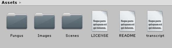 Asset folders in Unity